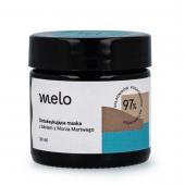 Melo, detoksykująca maska z błotem z Morza Martwego, 30ml