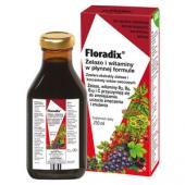 FLORADIX, Żelazo i witaminy, tonik, 250ml