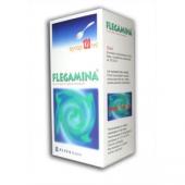 Flegamina, syrop 4mg/5ml, smak miętowy, 120ml
